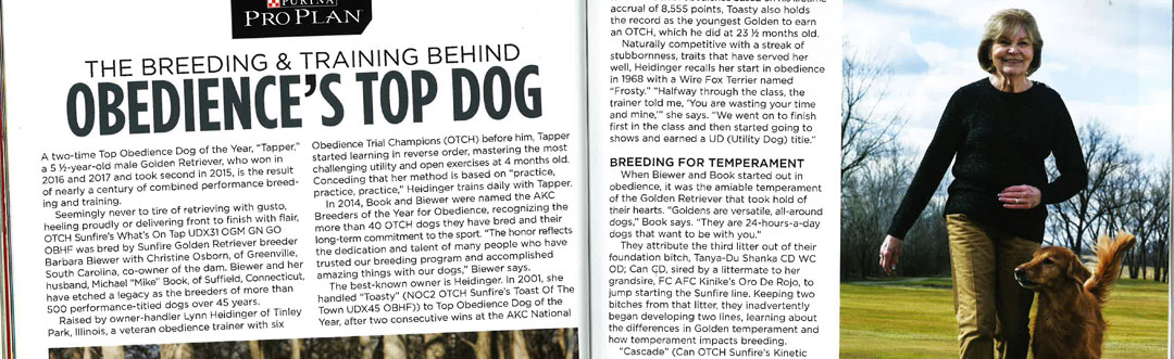 Lynn and Tapper in Golden Retriever News Magazine